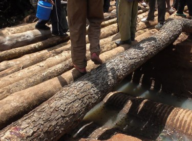 Les eaux de pluies emportent un pont et coupent la circulation entre Tiémé et Séguélon